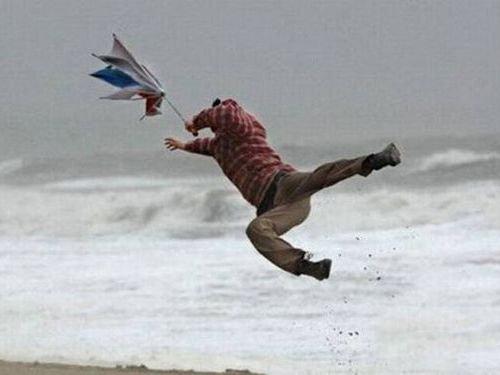 「あまりに強風な日には、どんなことが起こると