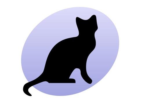 31際の猫