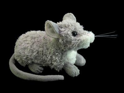 ネズミを食べるよう政府が推奨