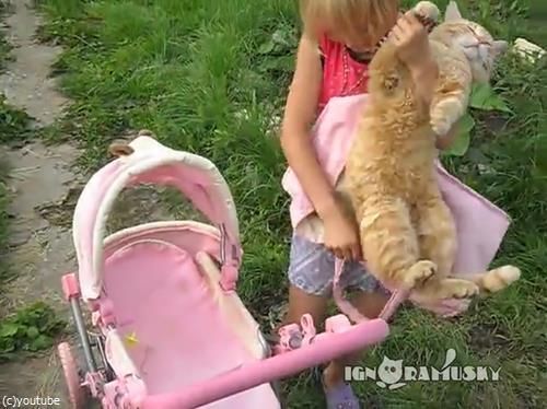 おままごとに付き合う猫01
