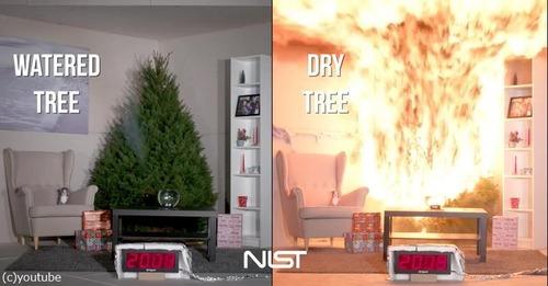 クリスマスツリーの扱い方法に注意03