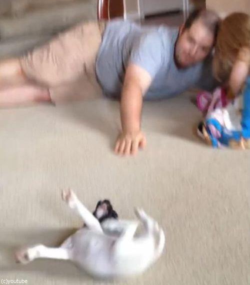 パパと子犬の戦い06