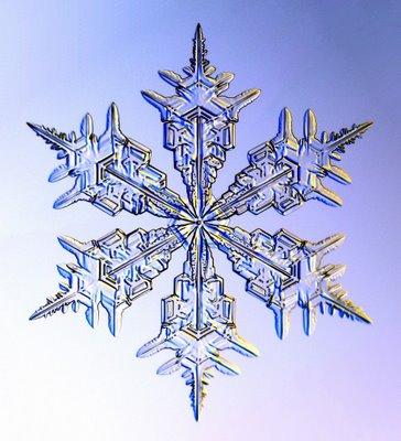 雪の結晶08