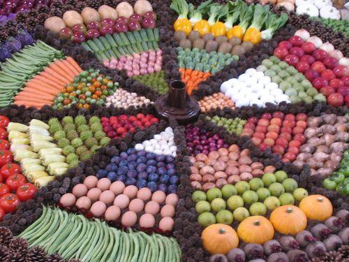 野菜の陳列アート00