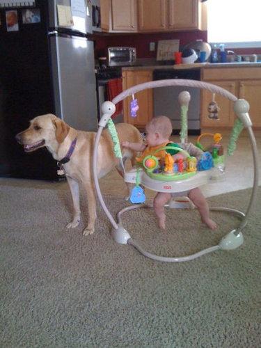 息子と愛犬の友情05