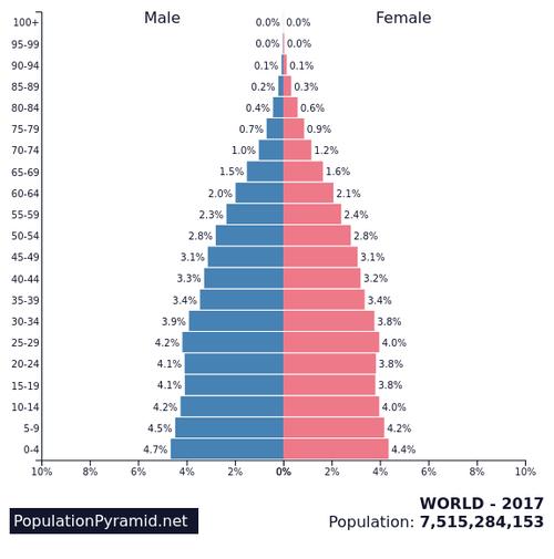 UAEの人口ピラミッド02