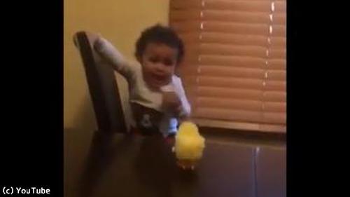 ひよこのおもちゃを怖がる赤ちゃんがじわる04