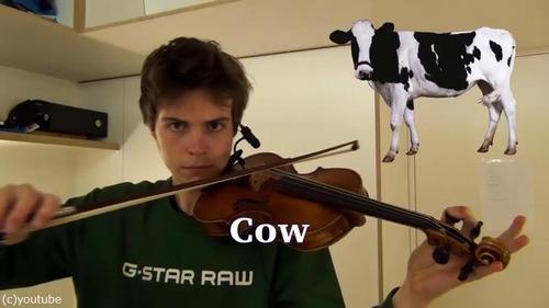 ヴァイオリニストが動物の鳴き声を演奏する01