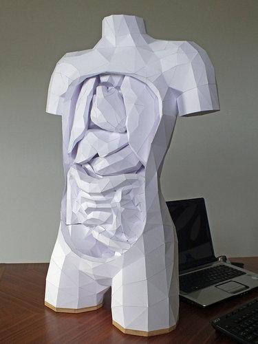 人体模型ペーパークラフト00