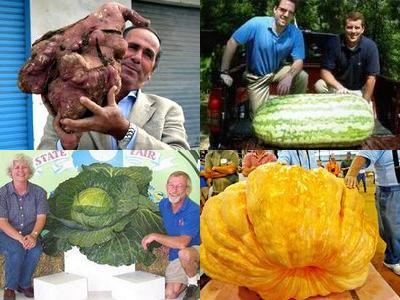 世界一大きな野菜や果物00