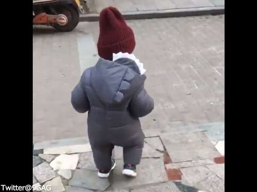 赤ちゃん「転ばぬ先の杖」00