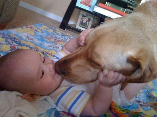 息子と愛犬の友情04