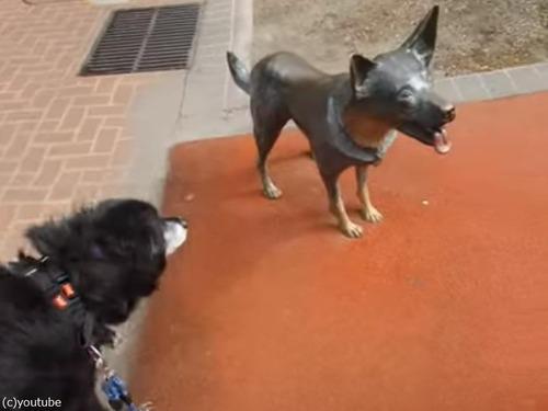 銅像の犬が気になる犬