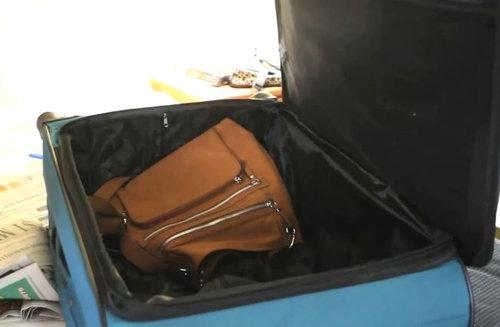 スーツケース猫01