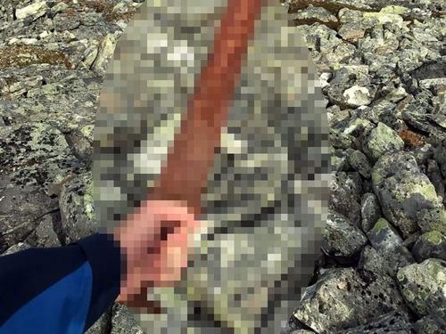 ヴァイキングの剣00