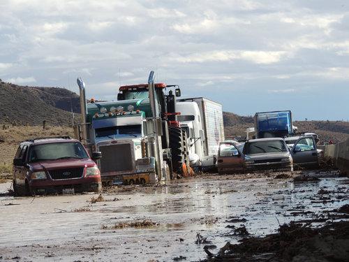 干ばつの続くカリフォルニアにようやく雨が降った13