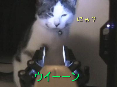 ロボットvs猫