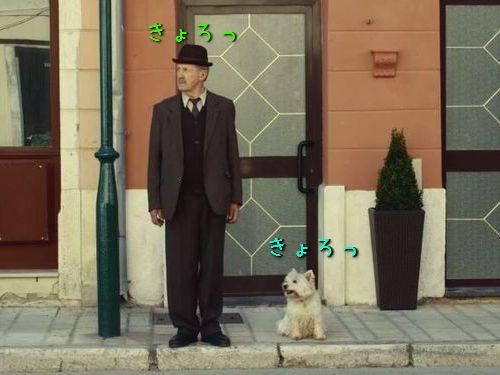 老人と愛犬00