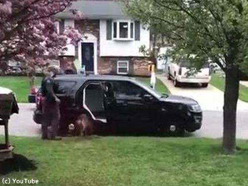 警察犬「働きたくないでござる」05
