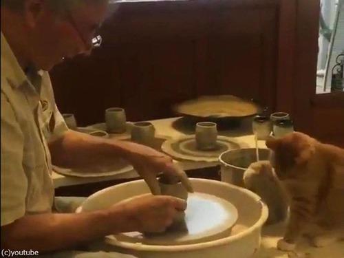 猫と陶芸00