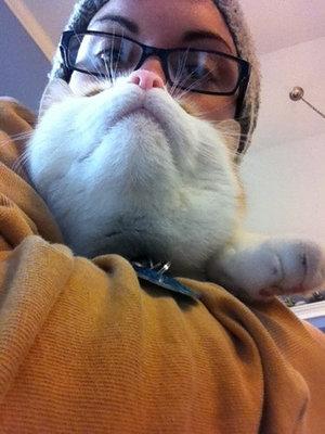 猫でヒゲ遊び14