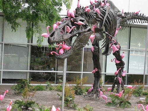 フラミンゴの群れはティラノサウルスを90秒で倒せる01