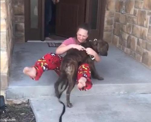 保護施設で世話していた犬をプレゼント01