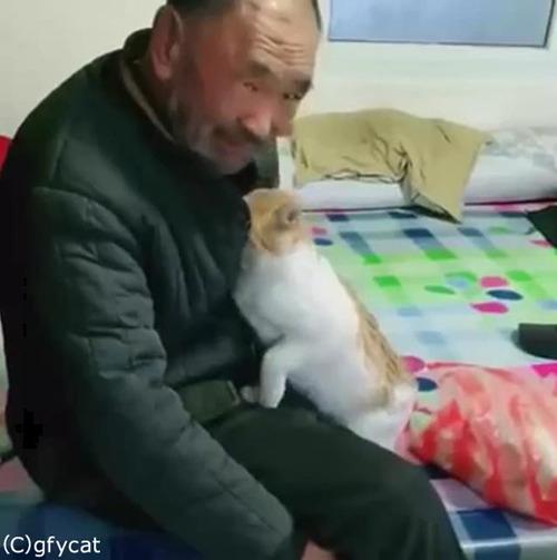 猫とおじいちゃん、とっても仲良し03