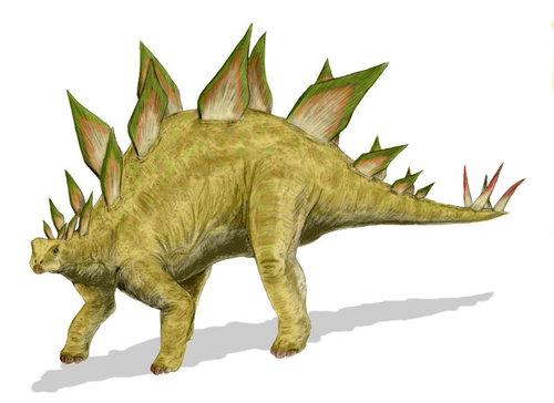 「ステゴサウルス」