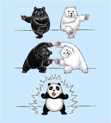 ドラゴンボールでパンダを説明01