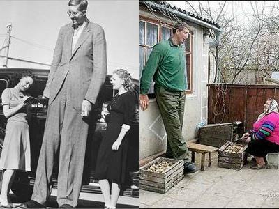 史上もっとも背の高かった男たちベスト10