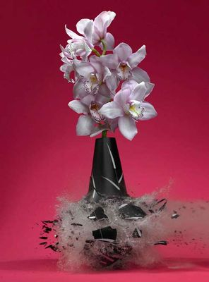 生け花と花瓶─破壊の美学11