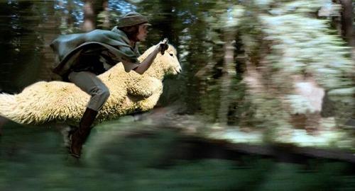 羊ジャンプ01