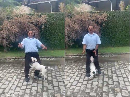 犬の横でポーズを決めた男性が驚いたこと01