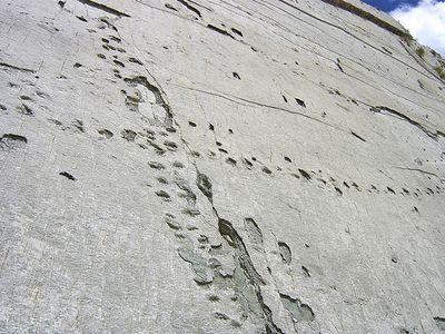 ボリビアの恐竜の足跡03