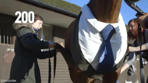 イギリスでは馬も紳士08