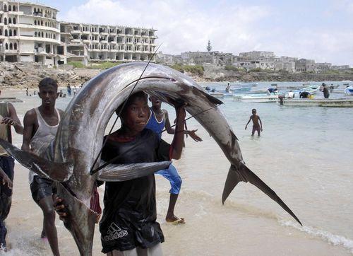 ソマリアの魚釣り06