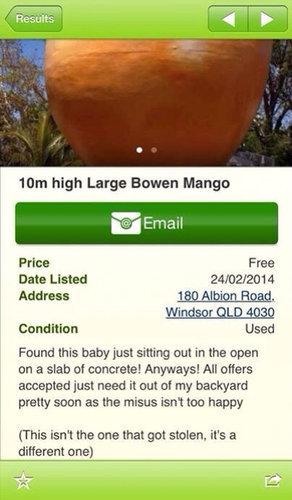 10トンのマンゴー04