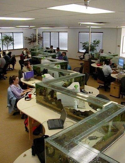 水族館オフィス