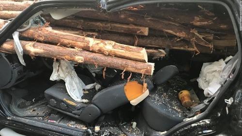 トラックの材木が突き刺さるも運転手無事01