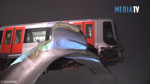 オランダの電車が「クジラのしっぽ」で助かる02