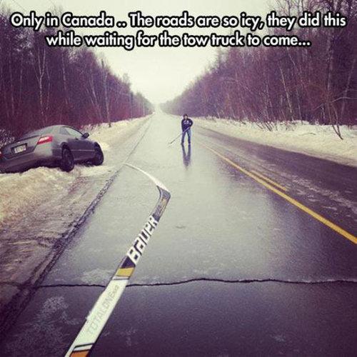 さすがカナダ15
