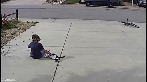 近所の少年は毎日うちの片目の猫を撫でにやってくる03