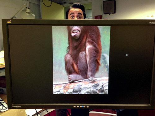 職場で「動物園ごっこ」21