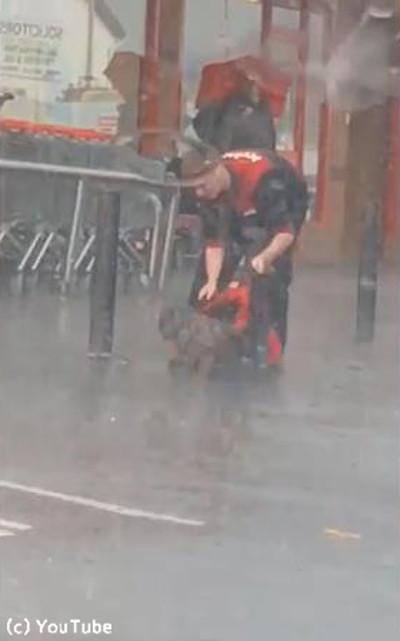 大雨の中繋がれたままの犬02