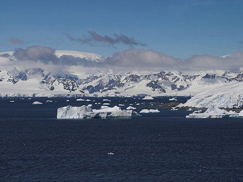 じわじわくる南極の写真00