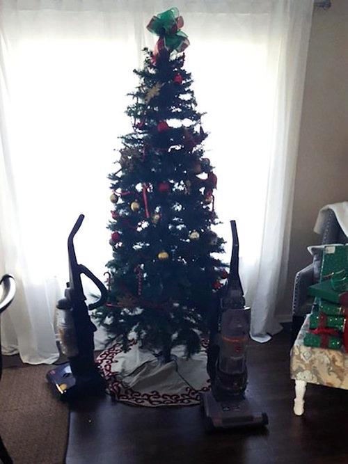 ペットからクリスマスツリーを守る戦い05