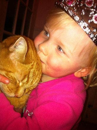 猫をぎゅーっとしたくなる写真22
