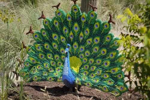 サンアントニオ動物園がレゴの動物を展示02