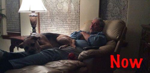 犬と父02